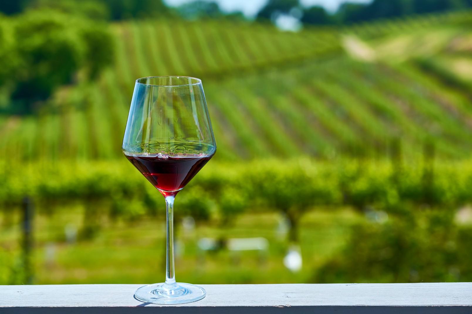 Enoturismo: per valorizzare le zone rurali si può passare da un bicchiere